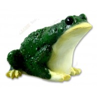 "Cache ""Frog"""