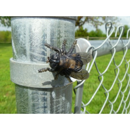 """Cache """"Magnetic insect"""" - Horsefly"""