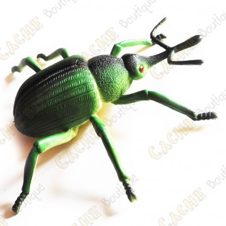 "Cache ""insect"" - Large green beetle"
