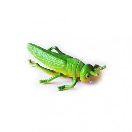 """Cache """"insect"""" - Grasshopper"""