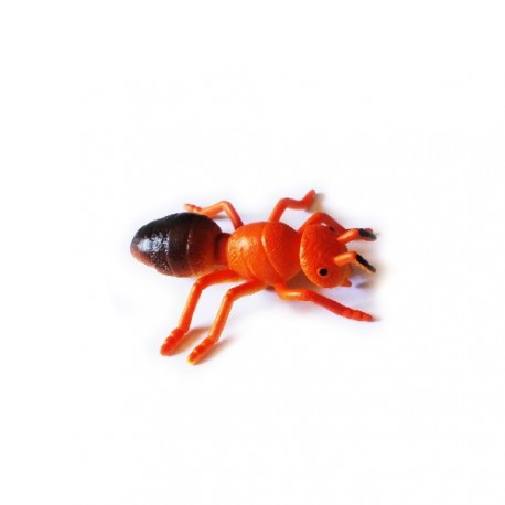 """Cache """"insect"""" - Red ant"""