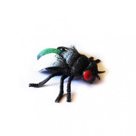 """Cache """"insect"""" - Horsefly"""